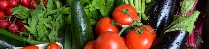 Gemüse aus dem Handschuhsheimer Feld
