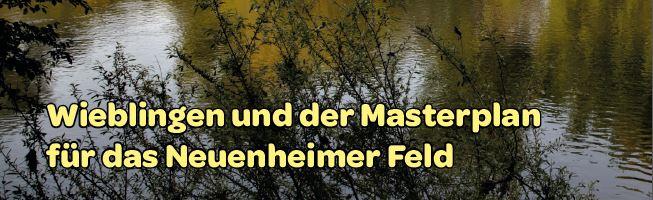 Titel Faltblatt Wieblingen und der Masterplan